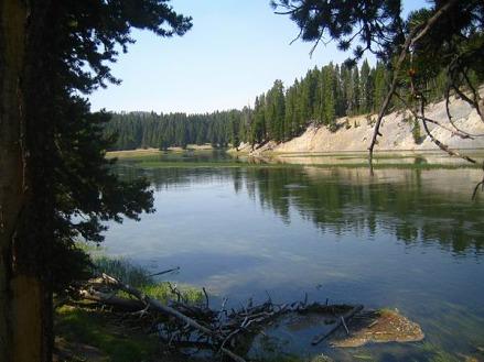 yellowstone national park wyoming etats-unis voyage aux usa en famille