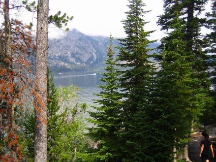 grand teton national park wyoming etats-unis voyage aux usa en famille