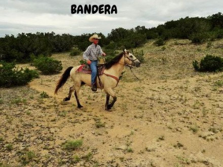 voyage aux usa en famille etats-unis texas bandera