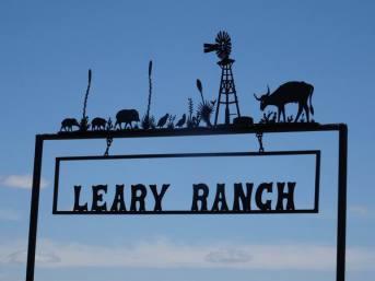 voyage aux usa en famille etats-unis texas