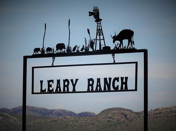 big bend national park texas etats-unis voyage aux usa en famille