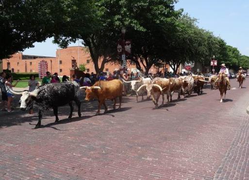 Fort Worth Texas Etats-Unis lors d'un voyage aux USA en famille