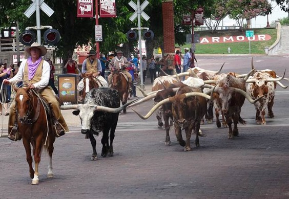 Fort Worth Stockyards aux Texas lors d'un voyage aux USA en famille