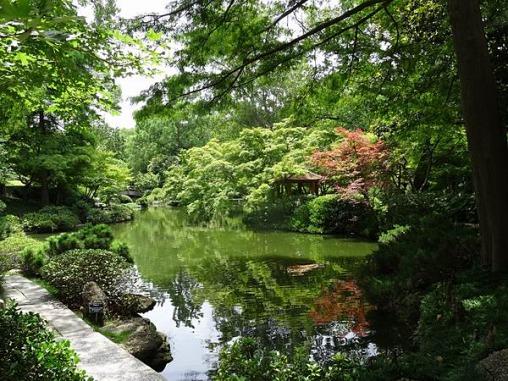 Le jardin japonais de fort worth lors d'un voyage aux USA en famille