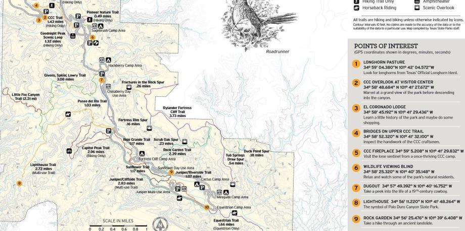 Points d'intérêts du Palo Duro Canyon au Texas lors d'un voyage en Amérique en famille