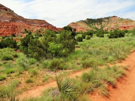 Une terre rouge riche en fer dans le palo duro canyon au texas vu pendant un voyage aux Etats-Unis en famille