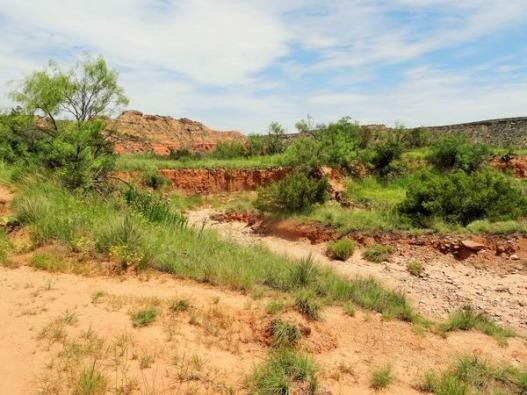 Le lit d'une rivière asséchée dans le Palo Duro Canyon au Texas comme on a pu le voir lors de notre voyage en famille aux USA