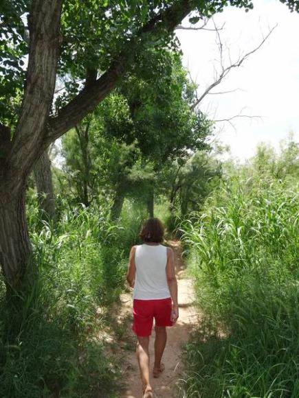 A l'ombre du Sunflower Trail au Texas dans le palo duro canyon pendant un voyage aux USA en famille