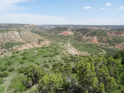 Un canyon qui abritait le plus grand ranch du monde au Texas à voir lors d'un voyage aux USA en famille