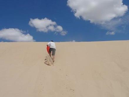 les dunes du monhahans sandhills state park au texas à monter pendant un voyage aux Etats-Unis en famill