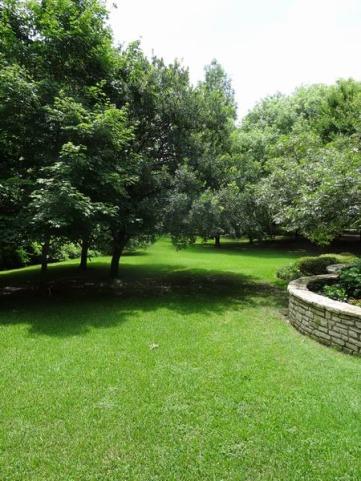 hamilton park à wichita falls auTexas à parcourir lors d'un voyage aux USA en famille