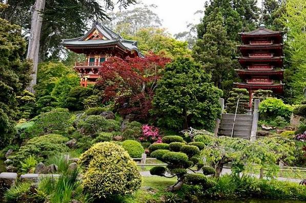 Le jardin japonais du Golden Gate Park à San Francisco en californie aux etats-unis à visiter lors d'un voyage aux usa en famille