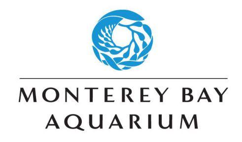 aquarium à Monterey en californie aux usa à voir au cours d'un voyage aux etats-unis en famille