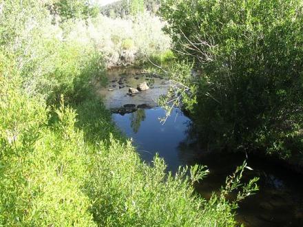 La Virginnia Creek en californie voyage aux etats-unis en famille