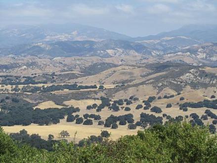 Campagne proche de Santa Barbara en californie aux USA à voir lors d'un voyage en amérique en famille