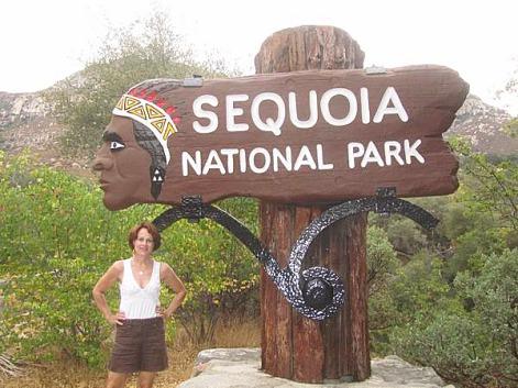 Sequoia National Park en Californie aux Etats-Unis à découvrir lors d'un voyage aux usa en famille