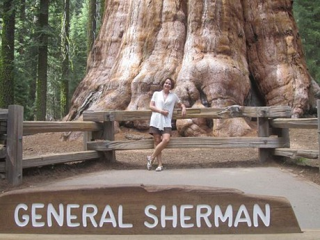 Le General Sherman à sequoia national park californie voyage aux usa en famille