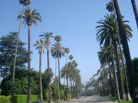 Berverly Hills à Los Angeles en Californie aux Etats-Unis à visiter lors d'un voyage en amérique en famille