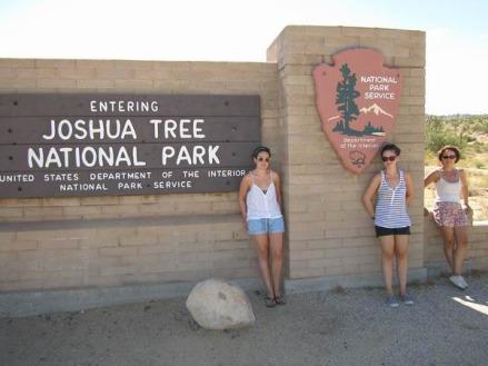 Joshua Tree National Park en californie aux Etats-Unis à voir lors d'un voyage aux USA en famille