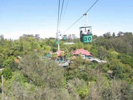 Téléphérique au Zoo de San Diego en californie en amérique à découvrir pendant un voyage aux USA en famille