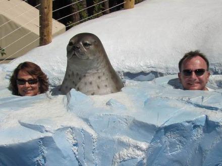Zoo de San Diego en californie en amérique à découvrir pendant un voyage aux USA en famille