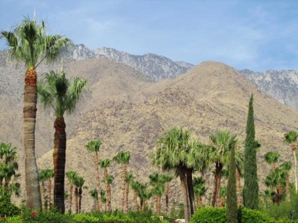 Palm Springs en californie aux USA à visiter lors d'un voyage en famille aux Etats-Unis en vacances
