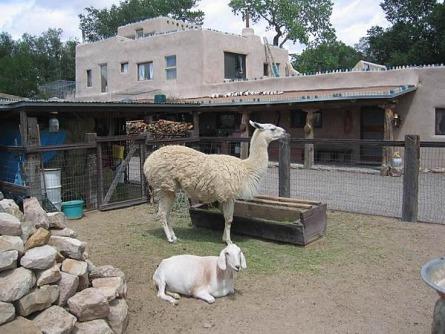 cerrillos au nouveau mexique aux etats-unis à voir lors d'un voyage aux usa en famille pendant les vacances