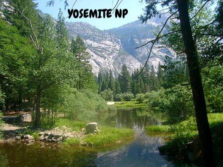 yosemite Californie voyage aux USA en famille
