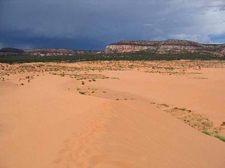 coral pink sand dunes state park utah etats-unis voyage aux usa en famille